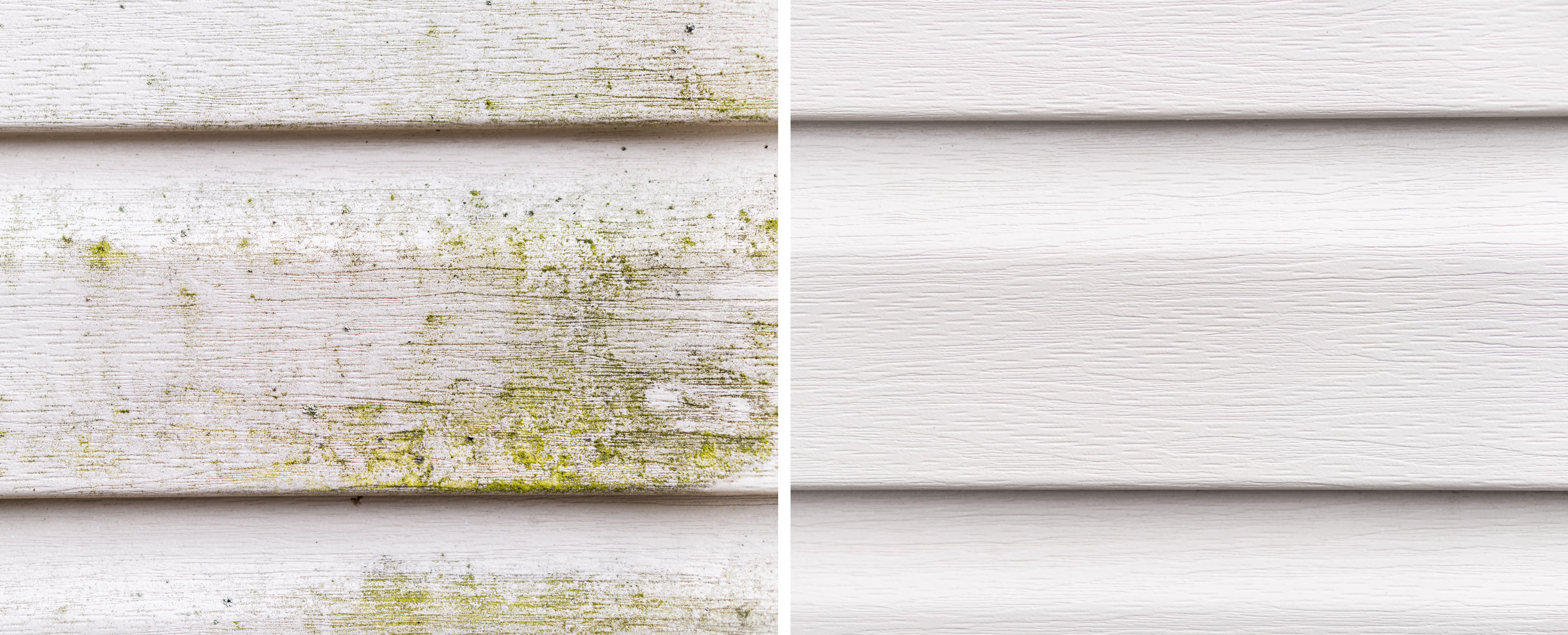 Fassadenreinigung ConceptCleaning